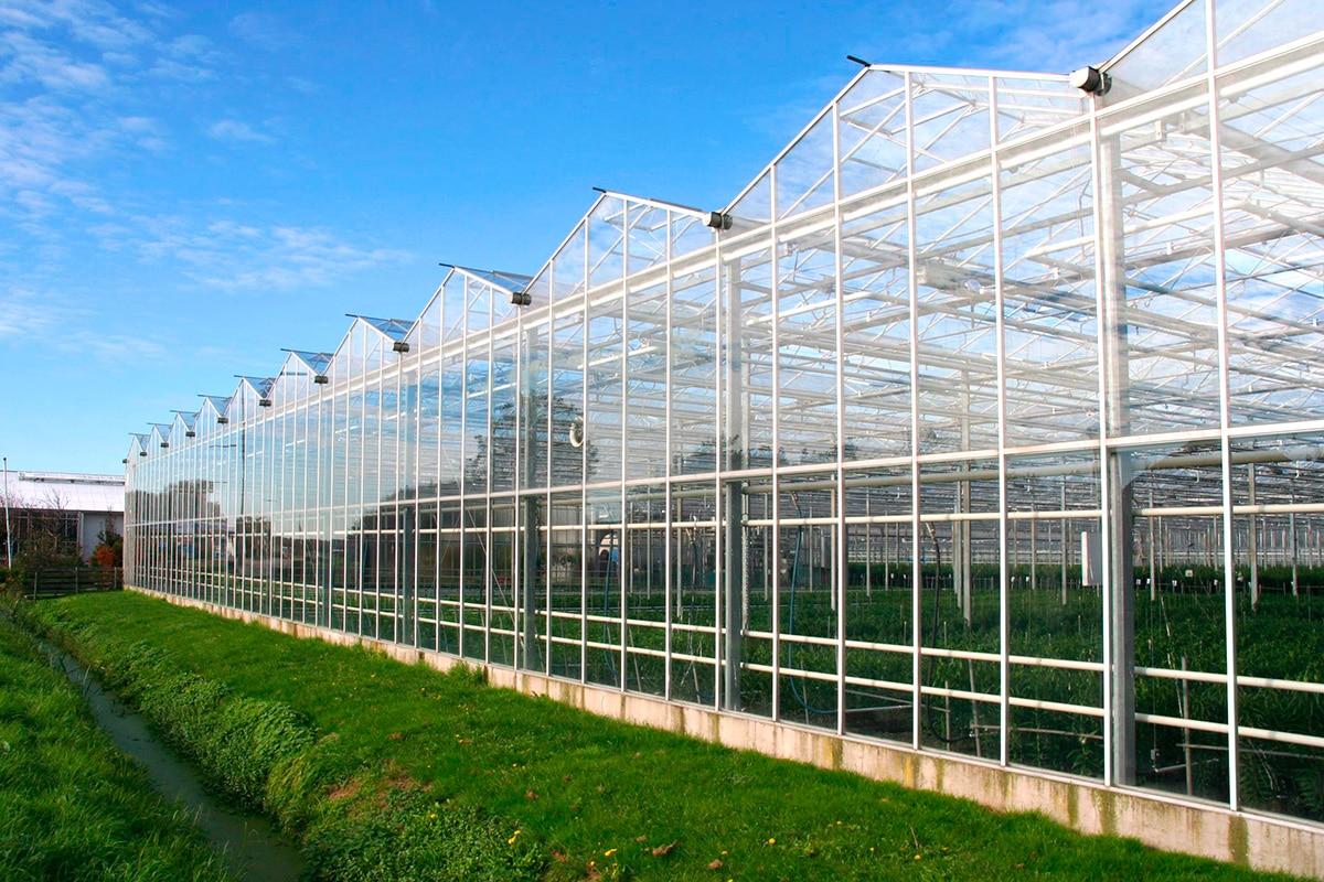 chauffage serre agricole