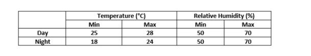 Simulation temperature