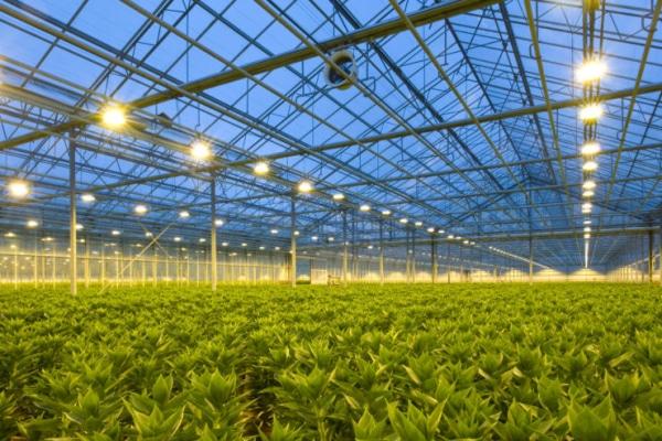 WEBINAR   Conception de systèmes énergétiques et d'équipements de maîtrise du climat de serres de cannabis
